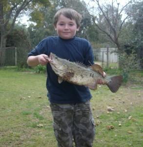 fish comp